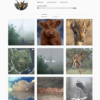 Buy Travel Instagram Account with Real Followers and Engagements. See our 5 star Reviews on our Google Business Page. #1 Trusted Instagram Account Seller