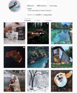 Buy Animals and Nature Instagram Account with Real Users and Engagements. See our Reviews on our Google Business Page. #1 Trusted Instagram Account Seller