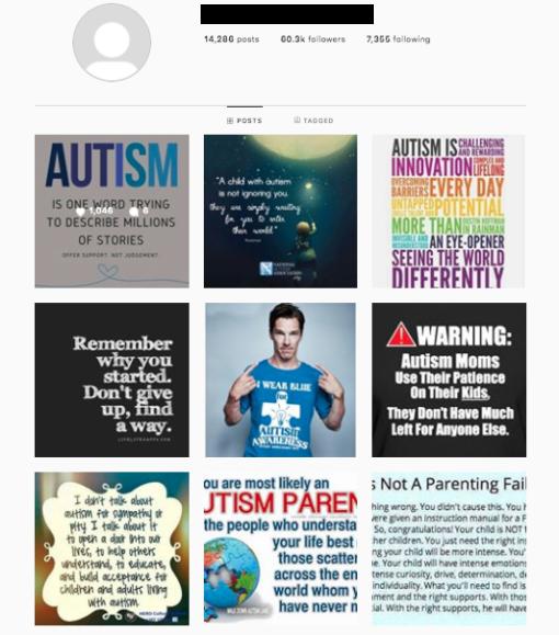 Buy Autism Instagram Accounts